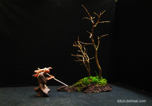 Lotus-Bonsai-figurines-1