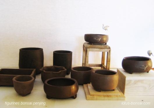 atelier-penjing-bonsai