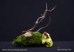 figurinitas-bonsai--creaciones-decora