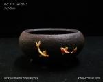 pot-bonsai-mame-no-117Jan13-1