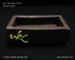 pot-bonsai-mame-no-149Feb13-2