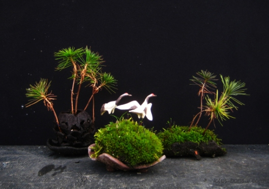 red crane bonsai penjnig figurines