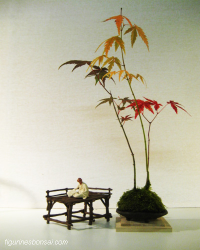 bonsai penjing