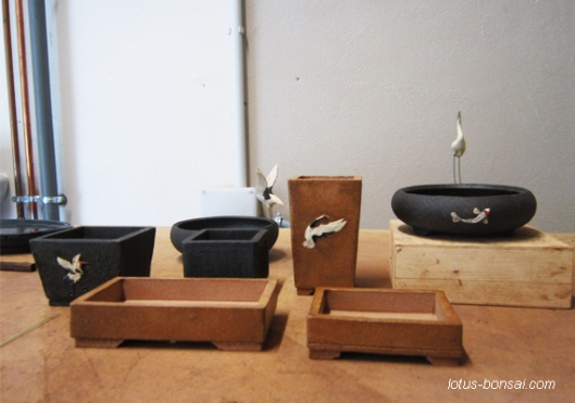 mini bonsai pots