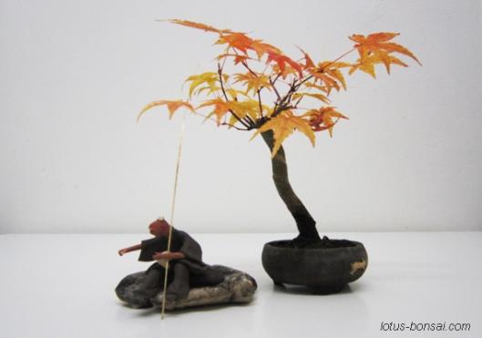 bonsai & mudman