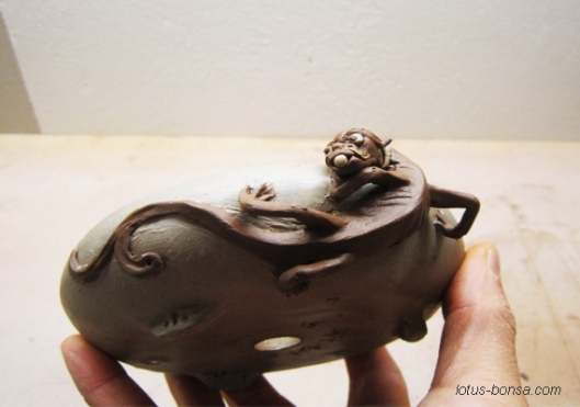bonsai dragon pot