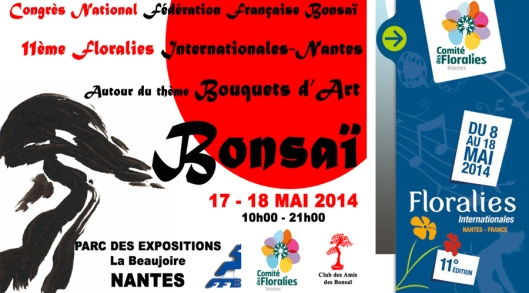 Spring Bonsai exhibition in France