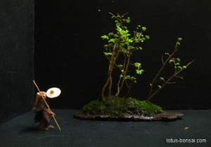figurine-bonsai-giang-15