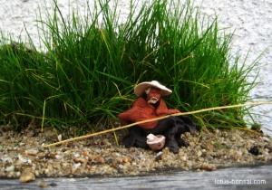 fisherman-bonsai