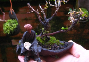 mini-bonsai-mudman