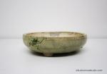 pot-bonsai-motif--grenouille-No1-C