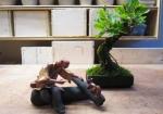 pot-mame-bonsai-lotus-studio-4