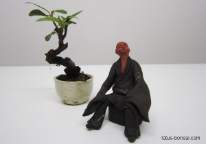 bonsai-figurine-lotus-studio-1