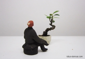 bonsai-figurine-lotus-studio-2