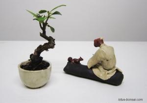figurine-penjing-lotus-studio-5