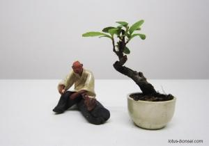 figurine-penjing-lotus-studio-6