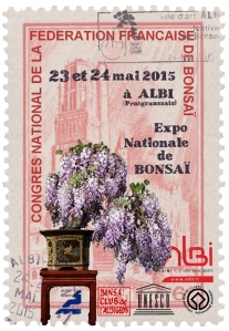 expo-bonsai-albi-2014