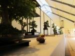 lotus-bonsai-pots-12