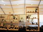 lotus-bonsai-pots-6