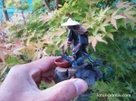 figurine-bonsai-penjing-3