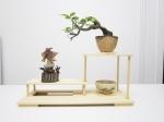 tablette-bonsai-figurines-display