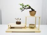 tablette-bonsai-figurines