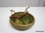 grue-bonsai-pots