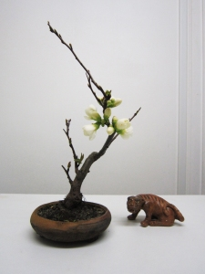 lotus-figurine-netsuke-bonsai