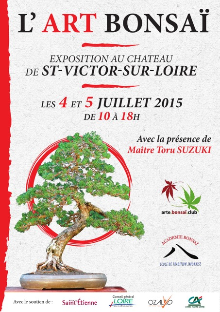 expo bonsai st etienne