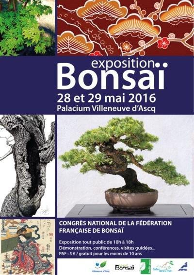 expo bonsai 2016 lotus studio