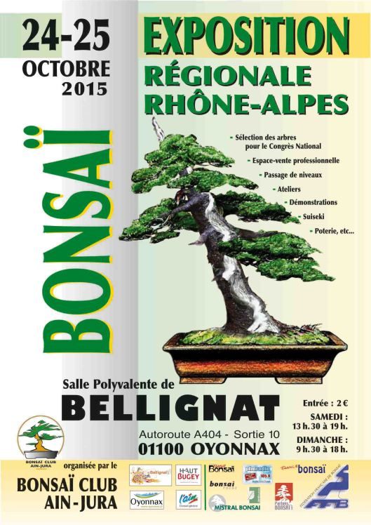 expo bonsai ail bellignat 2015
