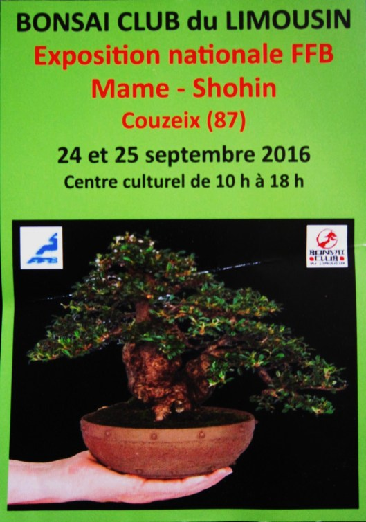 expo bonsai mame limoges 2016