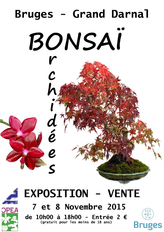 expo bonsai Bordeaux 2015