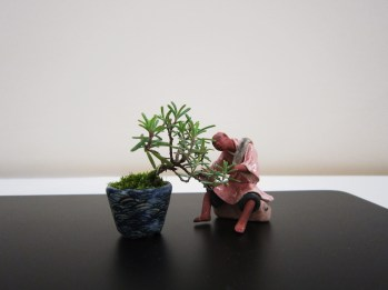 bonsai figurine