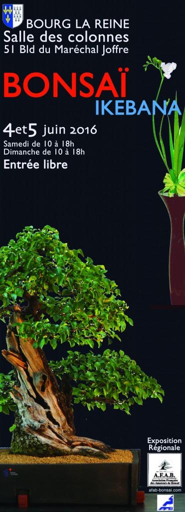 expo bonsai bourg la reine