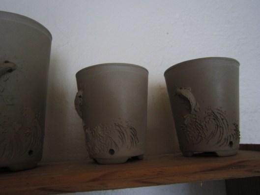 pot bonsai singe ouistiti 3