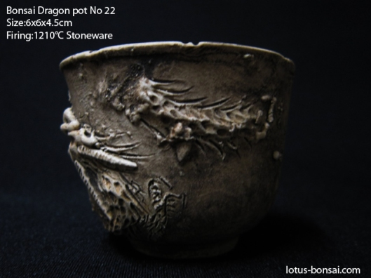 bonsai-dragon-pot-no22c