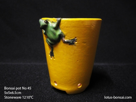 bonsai-pot-frog-no-45