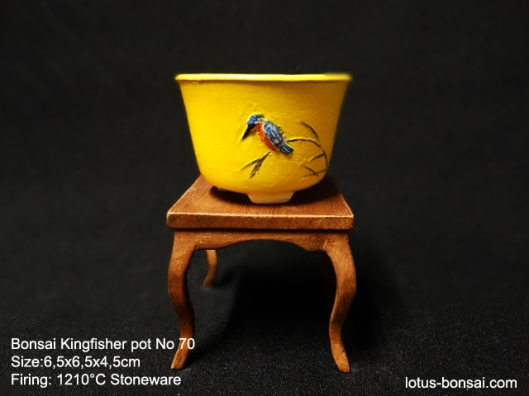 bonsai-kingfisher-pot-70