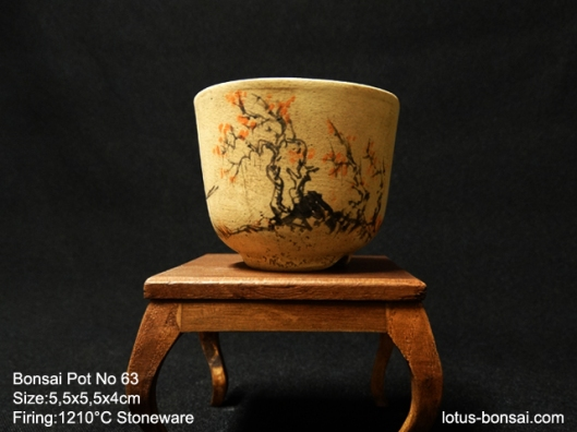 bonsai-pot-63