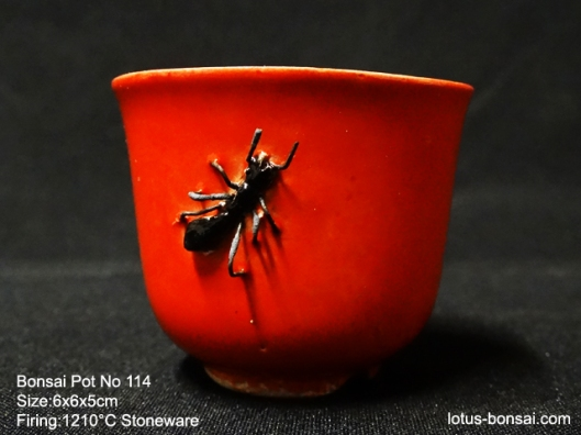 bonsai-ant-pot-no-114