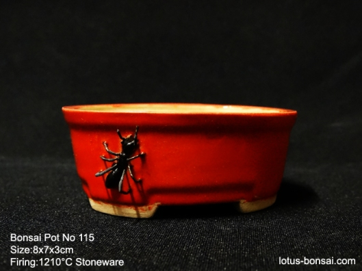 bonsai-ant-pot-no-115