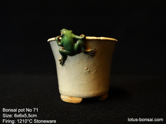 bonsai-frog-pot-No-71