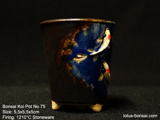 bonsai-koi--pot-No-75b