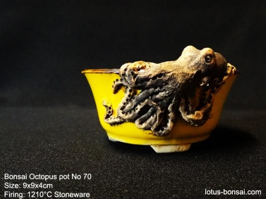 bonsai-octopus-pot-No-70