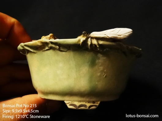 bonsai-pot-No-215c