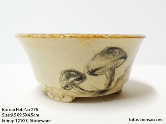 bonsai-pot-276-b