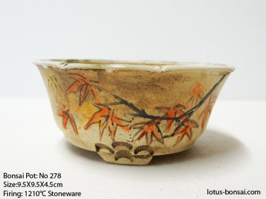bonsai-pot-278