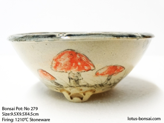bonsai-pot-279