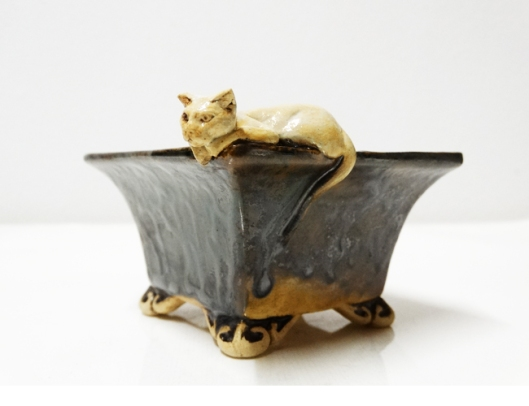 bonsai-cat-pot
